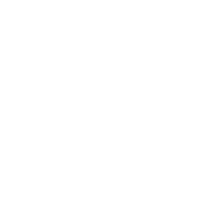 Alianza Single