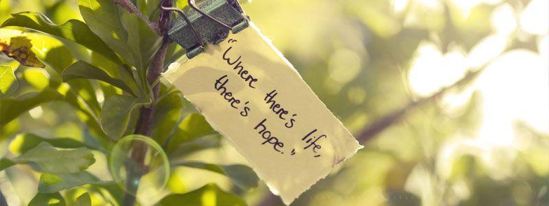 Donde hay vida, hay Esperanza