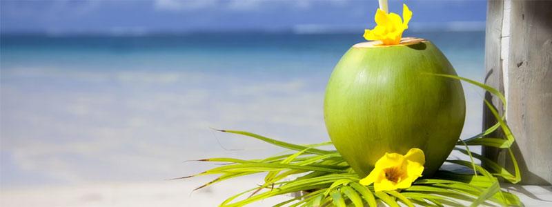 Fin de Año Singles a Punta Cana
