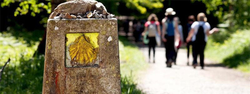 El Camino de Santiago en grupo